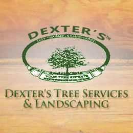 Dexter's Tree Services & Landscaping Website Image