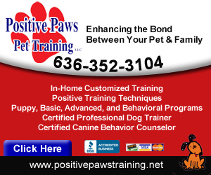 Positive Paws Pet Training Website Image