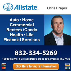 Allstate Insurance Agency: Premier Insurance Website Image